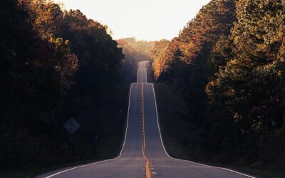 Your Roadmap to Resilience